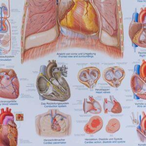 6-Mijn-hart-klopt-alleen-voor-jou...-1024x1024